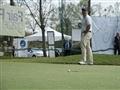 Césped sintético golf le robinie 4